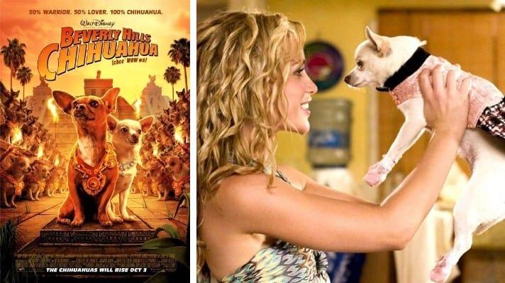 Beverly Hills Chihuahua film 2008